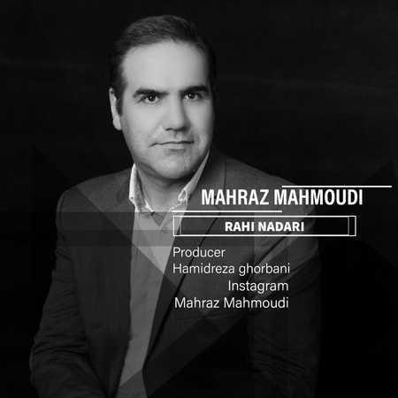 مهراز محمودی راهی نداری