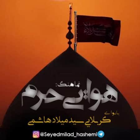 سید میلاد هاشمی هوایی حرم