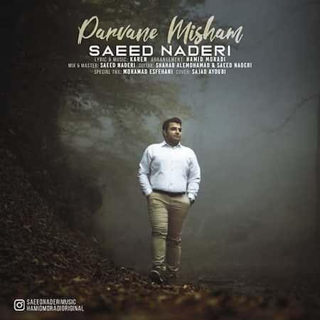 دانلود آهنگ سعید نادری پروانه میشم Saeed Naderi Parvane Misham